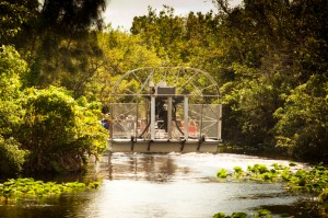 Try an air boat ride through the Everglades